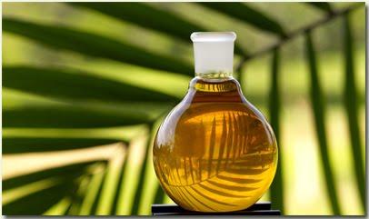 Biocombustivel.jpg